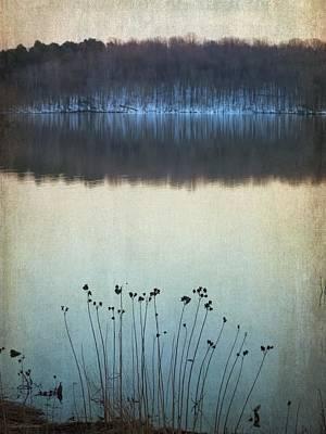 Lakeside Winter Flowers Poster