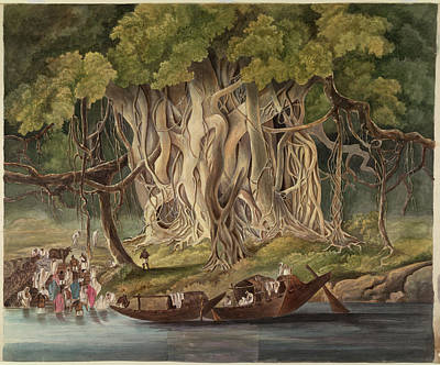 Landscape With Banyan Tree Poster