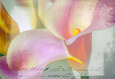 Language Of A Calla Lily Poster by Julie Palencia