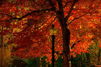 Lantern In Autumn Poster