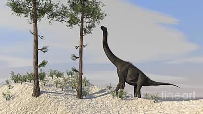 Large Brachiosaurus Grazing On Tall Poster by Kostyantyn Ivanyshen
