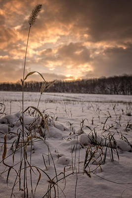 Last Light Across A Winter Field Poster