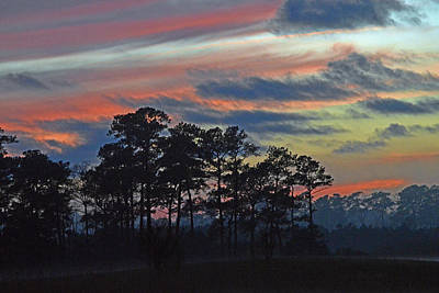 Poster featuring the photograph Late Sunset Trees In The Mist by Bill Swartwout