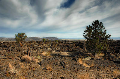 Lava Beds National Monument Poster by Donna Blackhall