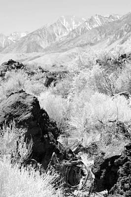 Lava Outcrop-white Mountains Poster by Harold E McCray
