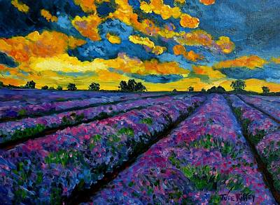 Lavender Fields At Dusk Poster