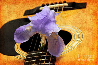 Lavender Iris And Acoustic Guitar - Texture - Music - Musical Instrument Poster by Andee Design