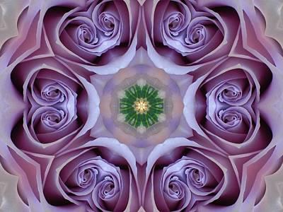 Lavender Rose Mandala Poster