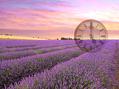 Lavender Time Poster by Gill Billington