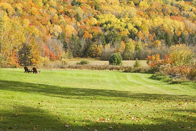 Lawn Chairs Overlooking Autumn Landscape In Vienna Maine Poster