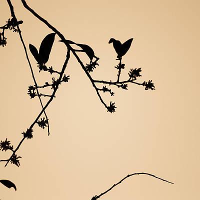 Leaf Birds Poster