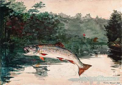 Leaping Trout Poster by Pg Reproductions
