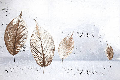 Leaves In Snow Poster by Carol Leigh