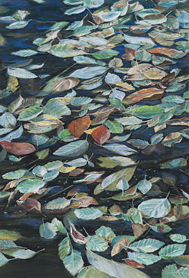 Leaves On Pond Poster by Nick Payne