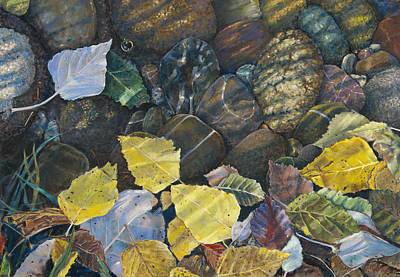 Leaves  Water And Rocks Poster by Nick Payne