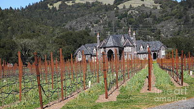 Ledson Winery And Vineyard In Late Winter Just Before The Bloom 5d22192 Poster