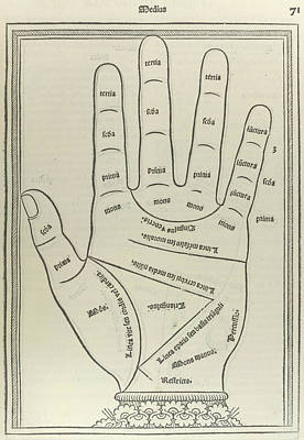 Left Palm Poster by British Library