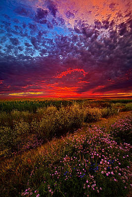 Left With The Memories Poster by Phil Koch