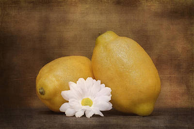 Lemon Fresh Still Life Poster
