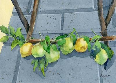 Lemon Swag Poster by Marsha Elliott