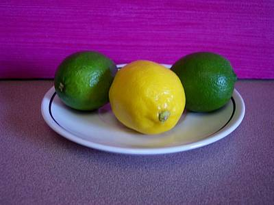 Lemons And Limes Poster by Melvin Turner