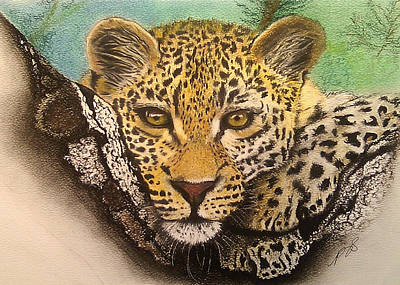 Leopard In A Tree I. Poster