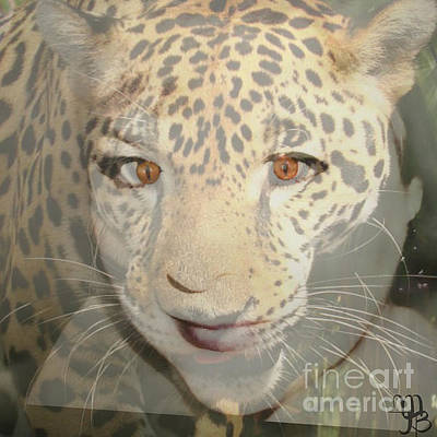 Leopard Lady Poster by Mindy Bench