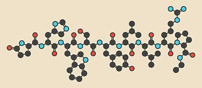 Leuprolide Gnrh Analog Drug Molecule Poster by Molekuul