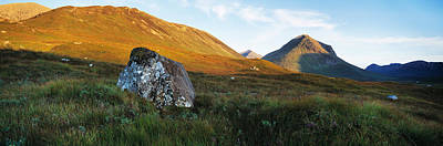 Lichen Covered Rock In A Field, Glen Poster by Panoramic Images
