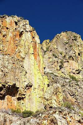 Lichen Covered Rock In Kings Canyon Poster