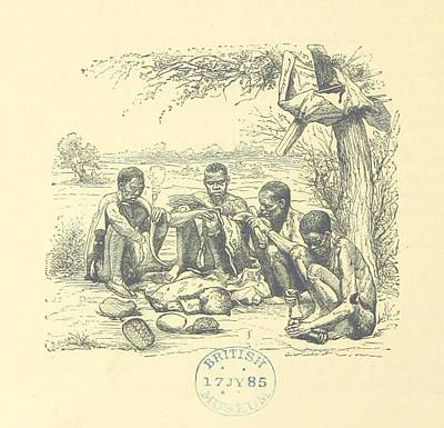 Life And Discoveries Of David Livingstone Poster