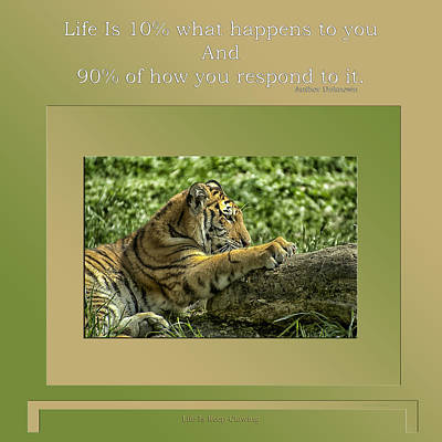 Life Is Keep Clawing Poster