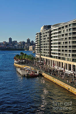 Life On Sydney Harbour Foreshores Poster by Kaye Menner