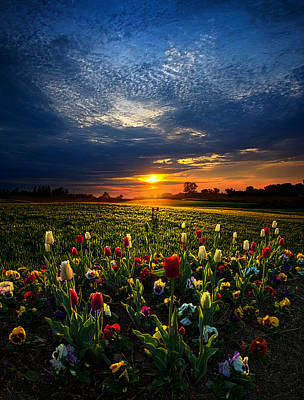 Lifetimes Poster by Phil Koch