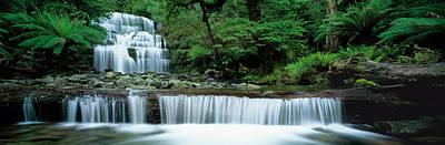Liffey Falls, Tasmania, Australia Poster by Panoramic Images
