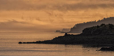 Poster featuring the photograph Lifting Fog At Sunrise On Campobello Coastline by Marty Saccone