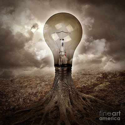 Light Bulb Growing An Idea In Nature Poster by Angela Waye