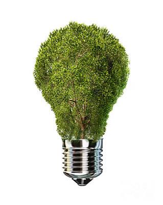 Light Bulb With Tree Inside Glass Poster by Leonello Calvetti