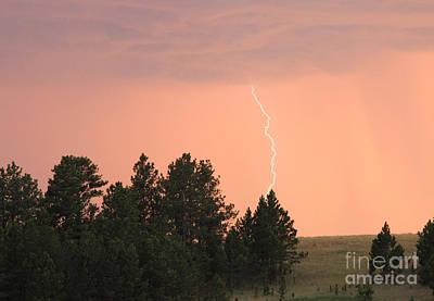 Lighting Strikes In Custer State Park Poster by Bill Gabbert