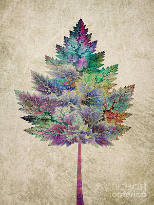 Like A Tree Poster by Klara Acel