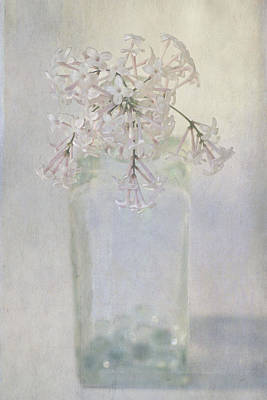 Poster featuring the photograph Lilac Flower by Annie Snel