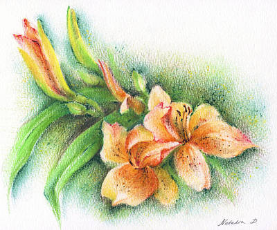 Poster featuring the drawing Lilies by Natasha Denger