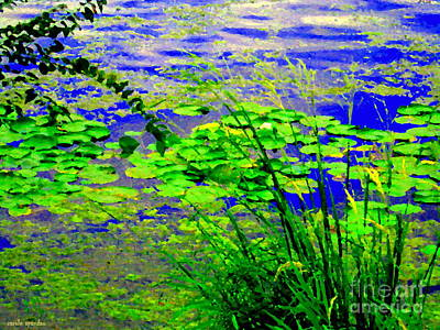 Lily Pads On The Lachine Canal Summer Landscape Scenes Colors Of Quebec Art Carole Spandau Poster by Carole Spandau