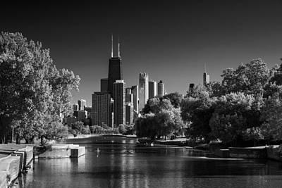 Lincoln Park Lagoon Chicago B W Poster by Steve Gadomski