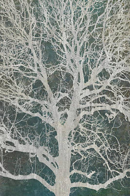 Linden Tree Poster by Cora Niele