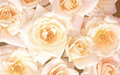 Linen Roses Poster by Georgiana Romanovna