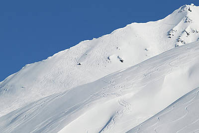 Lines Carved By Skiers And Snowboarders Poster