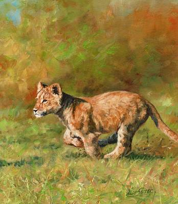 Lion Cub Running Poster by David Stribbling
