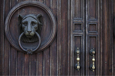 Lion Door Poster by Ivete Basso Photography