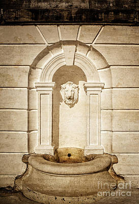 Lion Head Fountain The Mount Edith Warton Estate Lenox Ma Poster by Edward Fielding